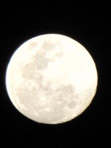 """""""Lunar landscape"""""""