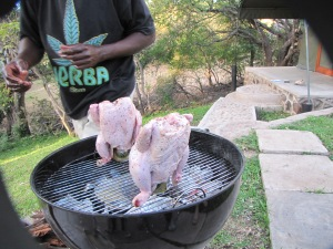 The smoldering coals cook chicken for our brai at a camp near the Zambezi River.