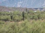 The Arizona desert terrain where Angel Thunder is conducted