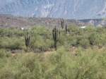 The Arizona desert terrain where Angel Thunder is conducted