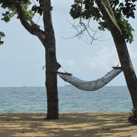 Daily Prompt: Stillness