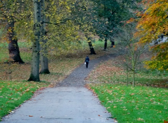 While not your traditional landscape, this shot of a lone walker in Green Park, in Central London near Buckingham Palace is, you have to admit, a peaceful shot.